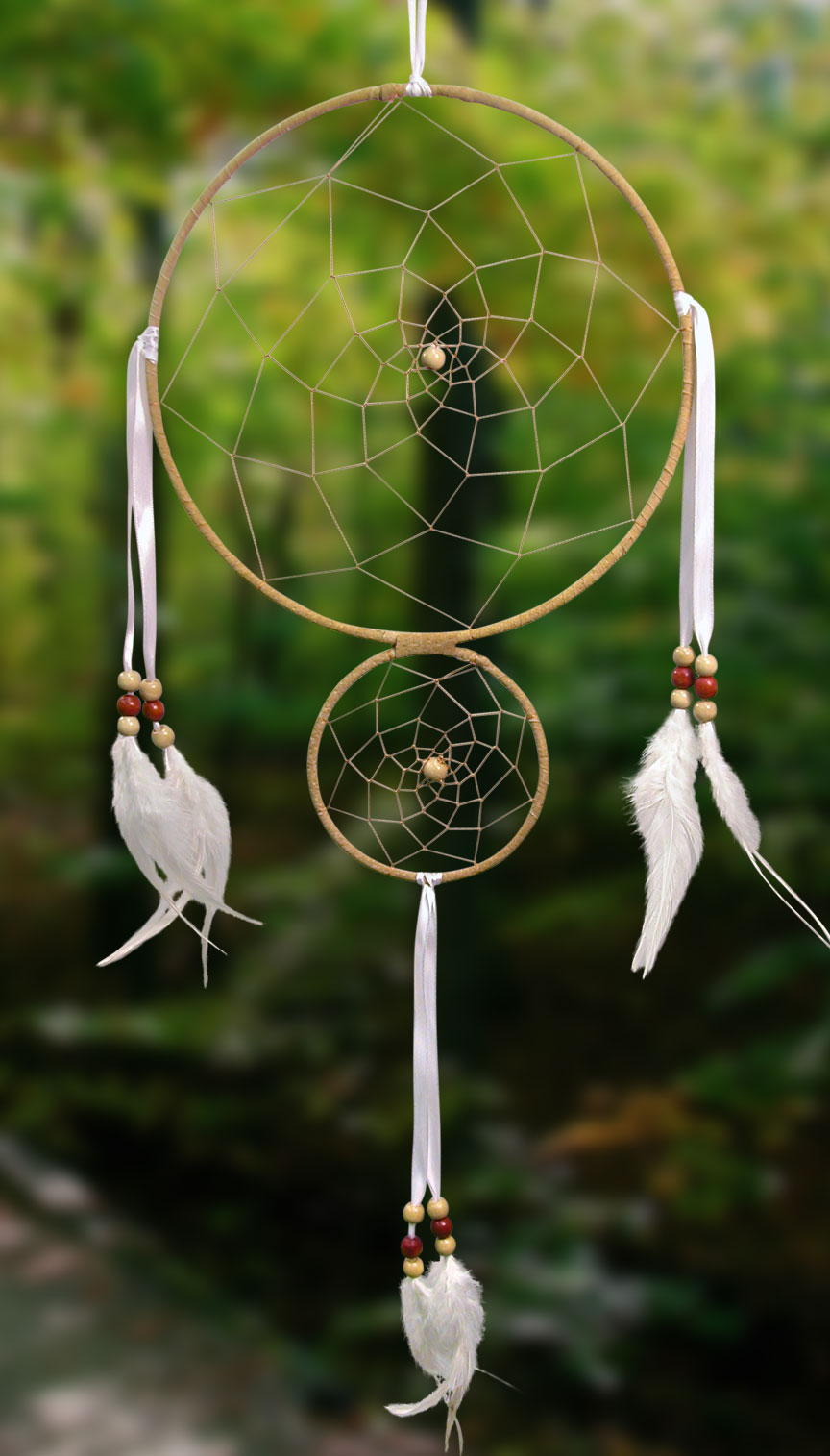 Shows an image of dreamcatcher owg001 on a scenic background