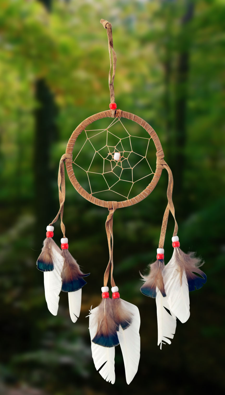 Shows an image of dreamcatcher owg003 on a scenic background