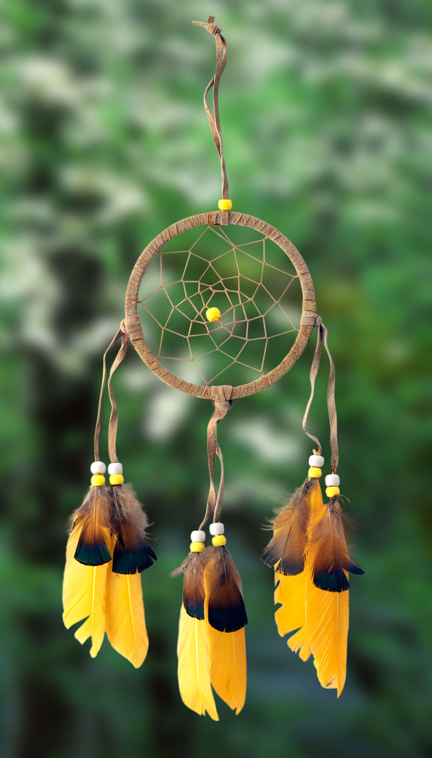 Shows an image of dreamcatcher owg004 on a scenic background