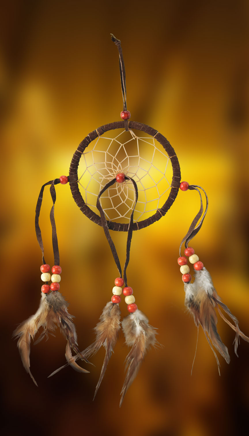 Shows an image of dreamcatcher owg005 on a scenic background