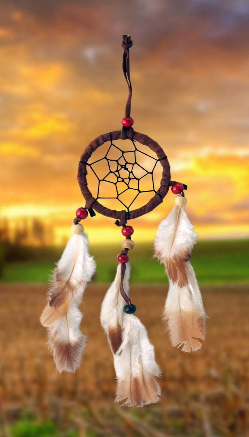 Shows an image of dreamcatcher owg007 on a scenic background