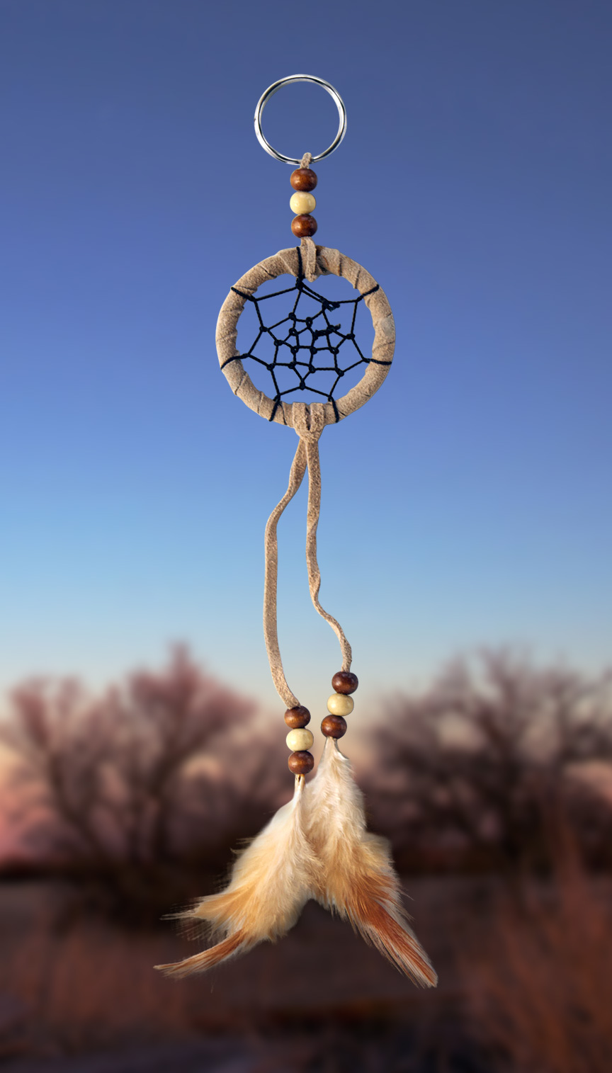 Shows an image of dreamcatcher owg008 on a scenic background