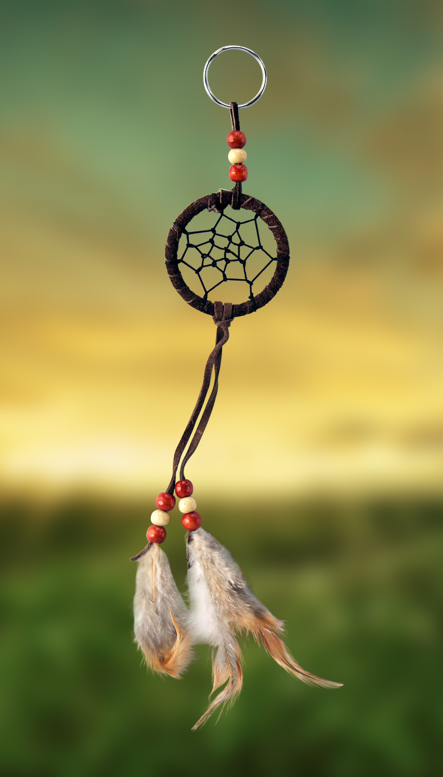 Shows an image of dreamcatcher owg009 on a scenic background