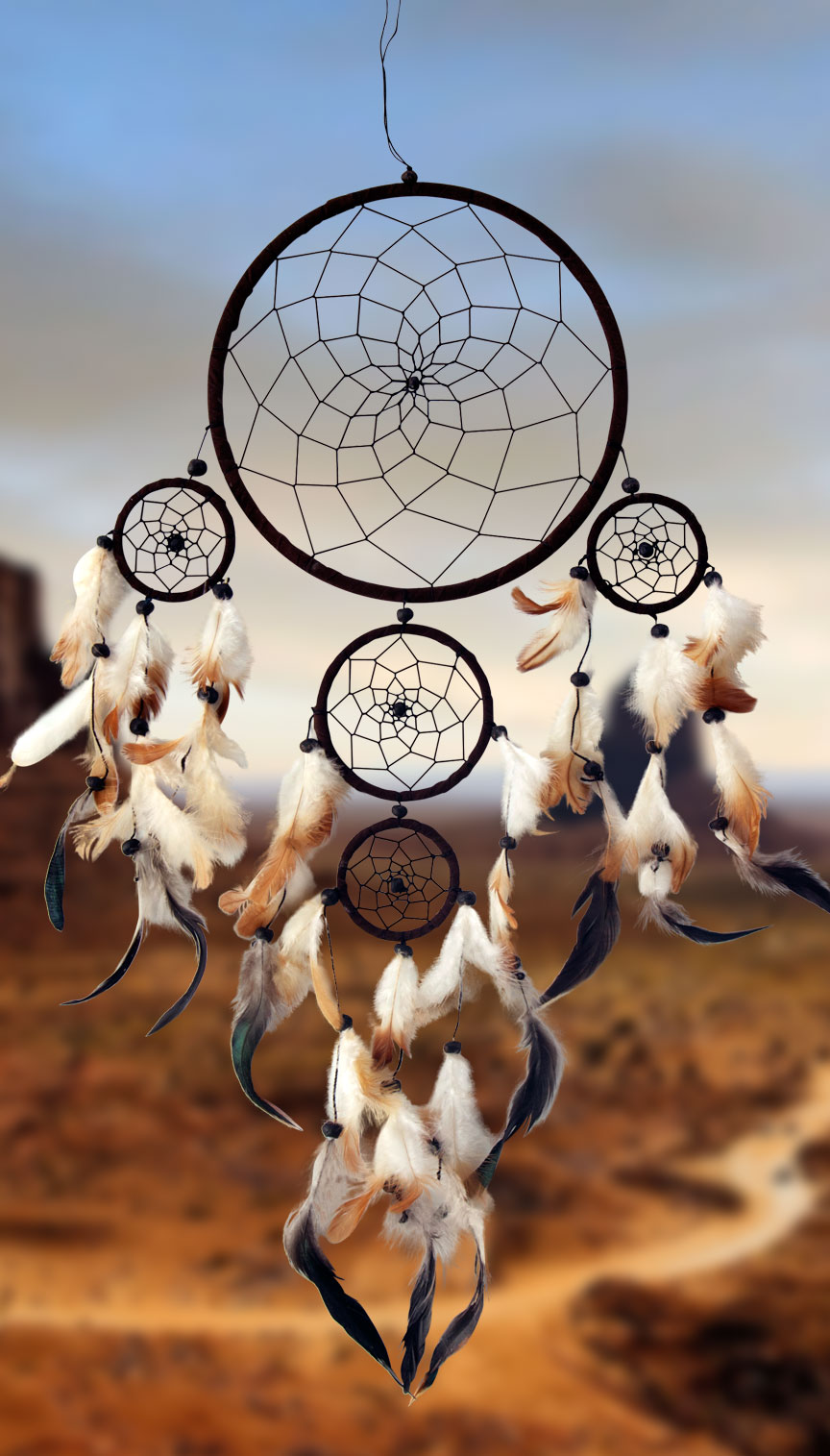 Shows an image of dreamcatcher owg011 on a scenic background
