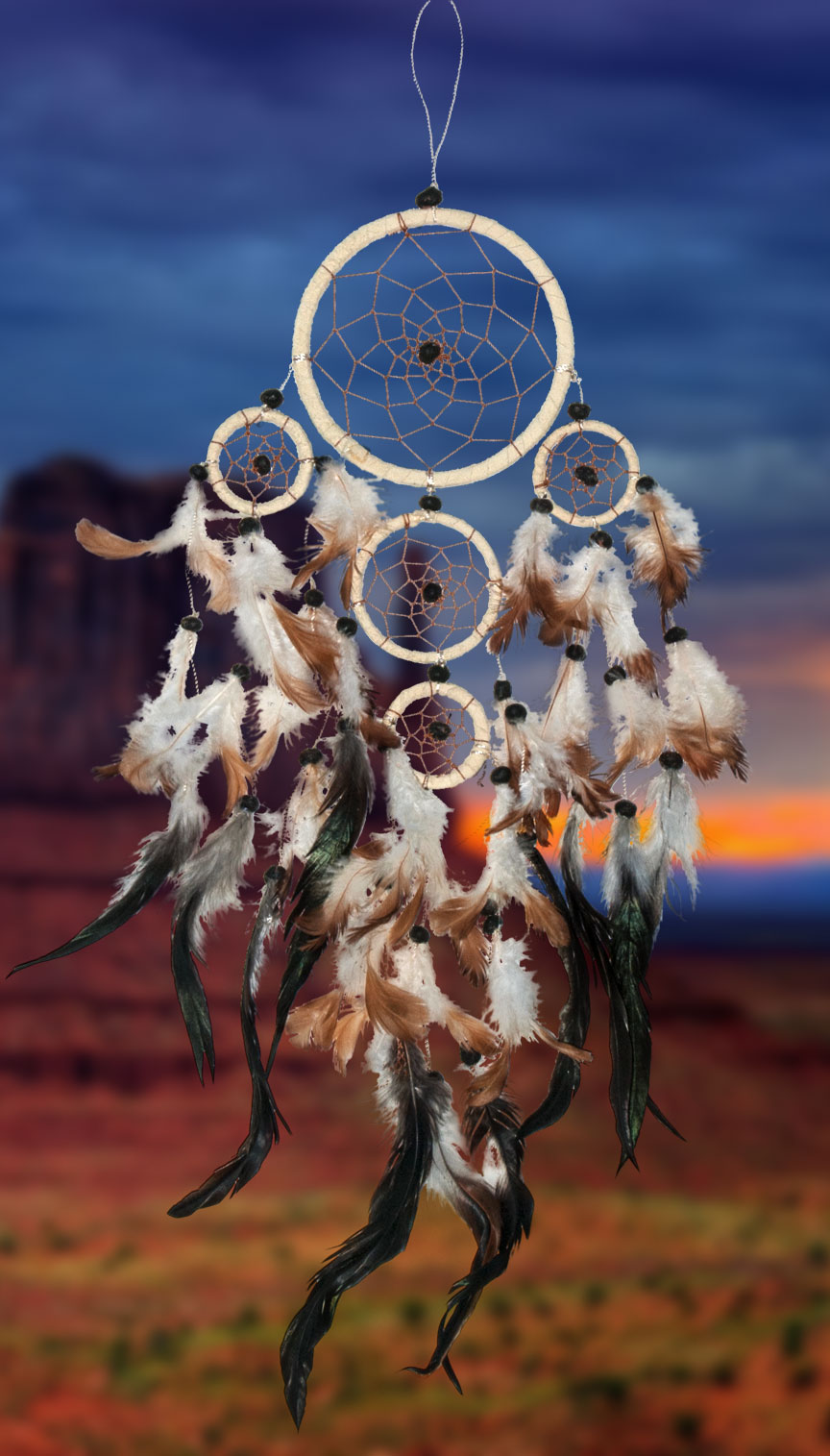 Shows an image of dreamcatcher owg012 on a scenic background